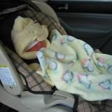Atest bezbednosti auto-sedišta